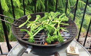Vegetarian BBQ – Tender Stem Broccoli and Peanut Salad