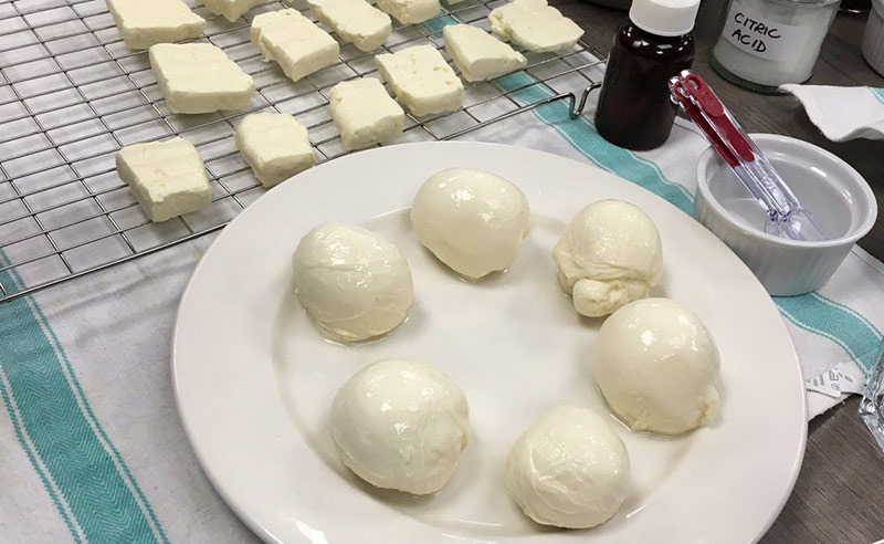 image of homemade Mozarella and Halloumi at Food Sorcery Cookery School Didsbury Manchester